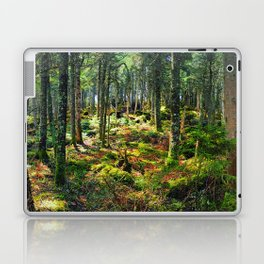 Late Spring Forest Laptop & iPad Skin
