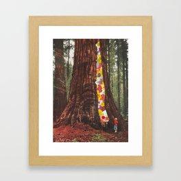 Nature's Secret Framed Art Print