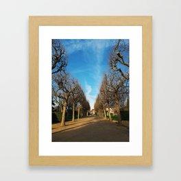 Bare trees alley Framed Art Print