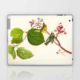 Pine Swamp Warbler Bird Laptop & iPad Skin