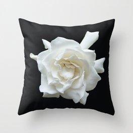 Gardenia on Black DPG150524 Throw Pillow