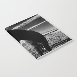 Icelandic Horse Notebook