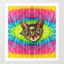 TIE DYE CAT Art Print