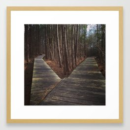 Two Roads Diverged Framed Art Print