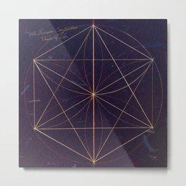 The Hexagon Construction Metal Print