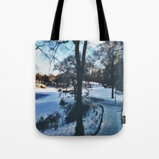 winter in new york Tote Bag