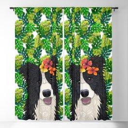Tropical Border Collie Blackout Curtain
