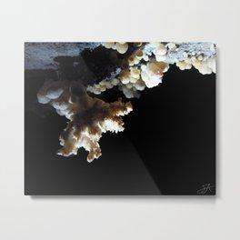 Gypsum Flower Metal Print