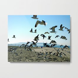 Seagulls and the Sea Metal Print
