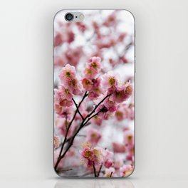 The First Bloom iPhone Skin