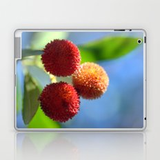 Strawberry tree fruits 8697b Laptop & iPad Skin