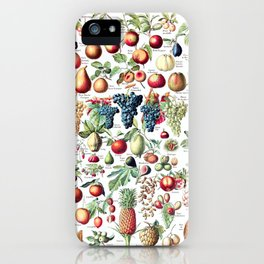 Adolphe Millot - Fruits pour tous - French vintage poster iPhone Case