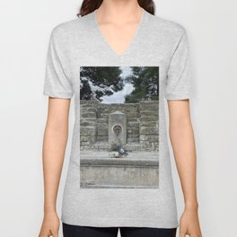 2 pigeons in the City of Carcassonne Unisex V-Neck