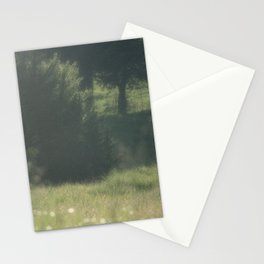 Summer Meadow II Stationery Cards