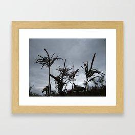 Dusk on the Island Framed Art Print