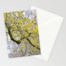 Springtime Nears Stationery Cards