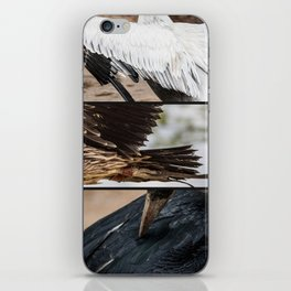 Composition of Wings iPhone Skin