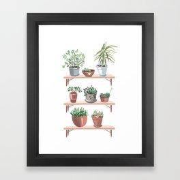flowerpots on the shelves Framed Art Print