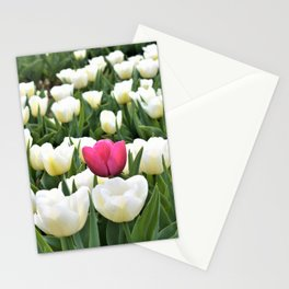 Pink between white Stationery Cards