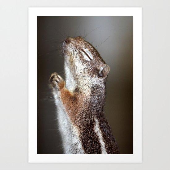 Praying Squirrel Art Print