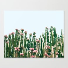 Blush Cactus #society6 #decor #buyart Canvas Print