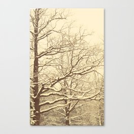 Winter tale 2 Canvas Print