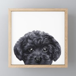 Black toy poodle Dog illustration original painting print Framed Mini Art Print