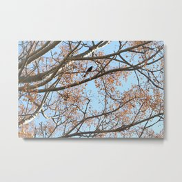 Rowan tree branches with berries and bird Metal Print