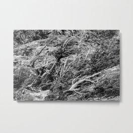 Windswept Woodland Mono Metal Print