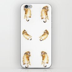 A Day in the Life of a Retired Kung fu Kitty iPhone & iPod Skin