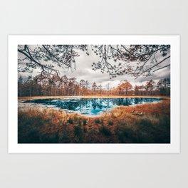 Lahemaa National Park Bogs @ Estonia Art Print
