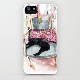 Lazy in Marrakesh iPhone Case