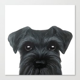 New Black Schnauzer, Dog illustration original painting print Canvas Print