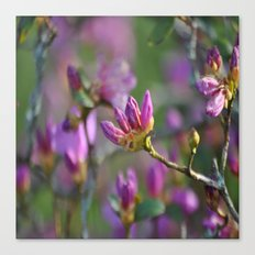 lilac nature # Canvas Print