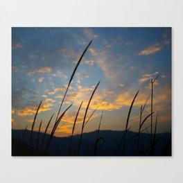 Sunset lover Canvas Print