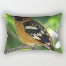 Blackheaded Grossbeak Rectangular Pillow