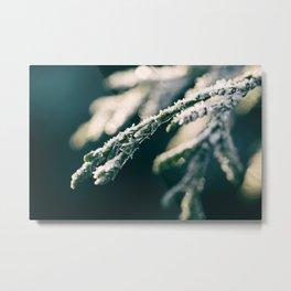 Ice Crystals And Sunshine Metal Print