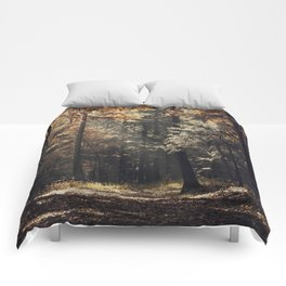 Autumn light and rays - horizontal Comforters