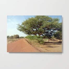 Sycamore Fig Tree African Dirt Road Landscape Metal Print