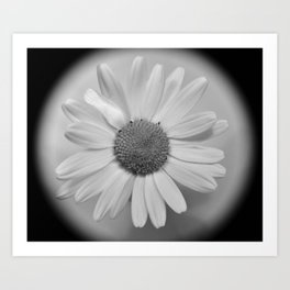 Flower No.4 Art Print
