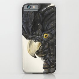 Cockatoo Portrait by Aert Schouman iPhone Case