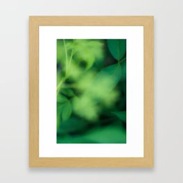 Green Green Green Framed Art Print