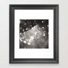 feather-light Framed Art Print