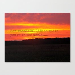 ....while you're in the world Canvas Print
