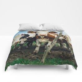 The Girls Comforters