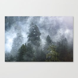 Smoky Redwood Forest Foggy Woods - Nature Photography Canvas Print