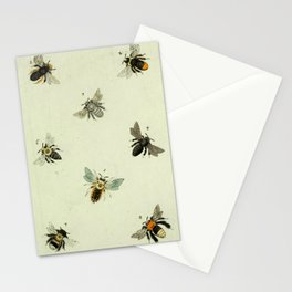Bee Species Stationery Cards