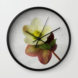 Vintage Helleborus  - JUSTART © Wall Clock