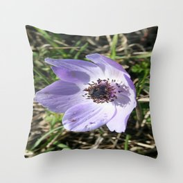 Lilac Blue Anemone Coronaria Wild Flower Throw Pillow