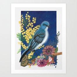Gabriel the Mexican Blue Jay Art Print